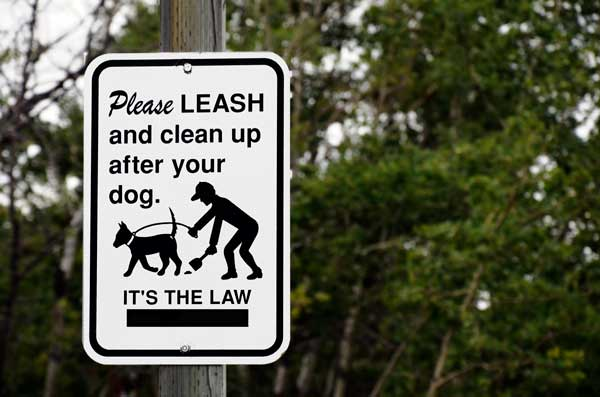 Its-the-law